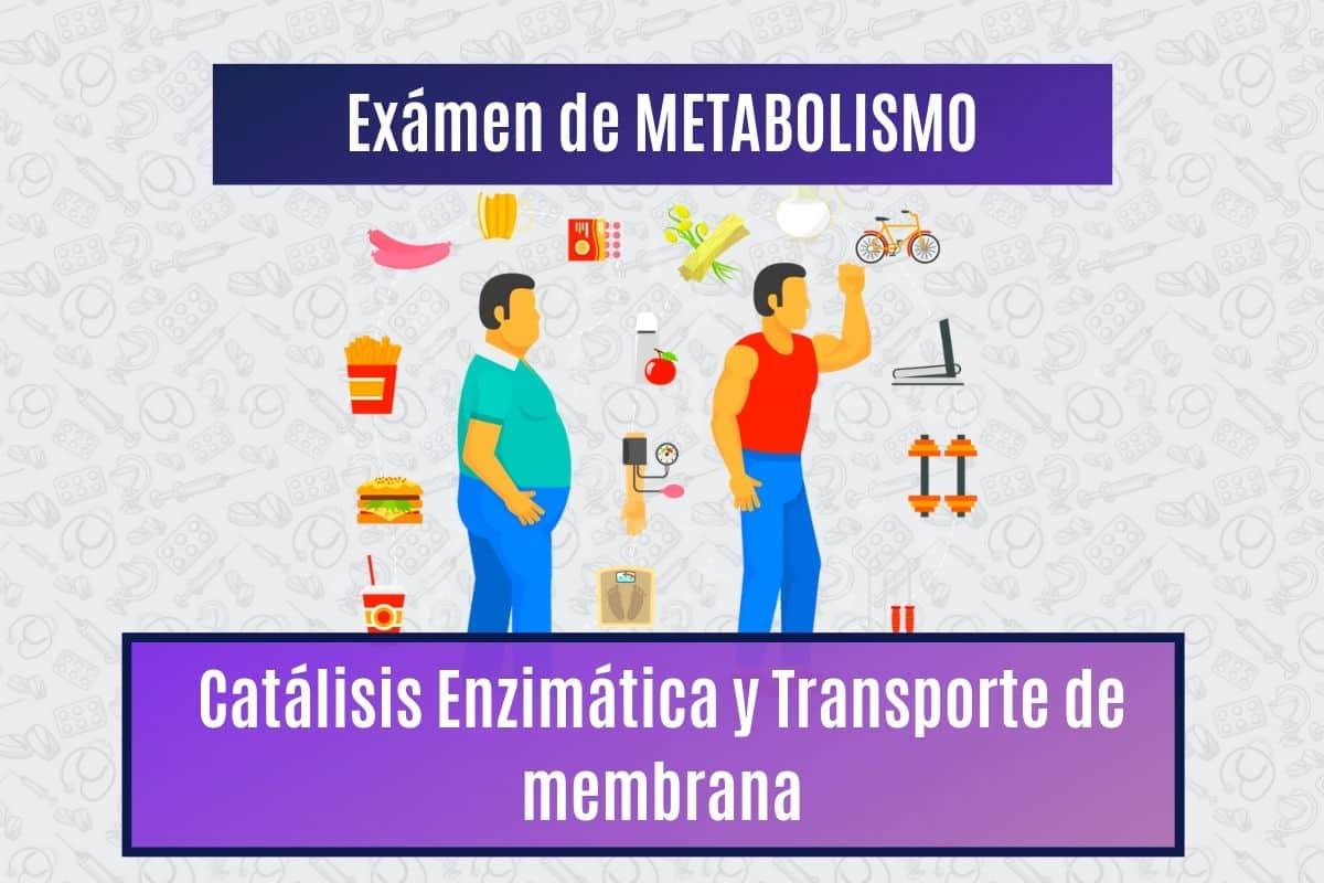 Metabolismo: Catálisis Enzimática y Transporte de membrana..