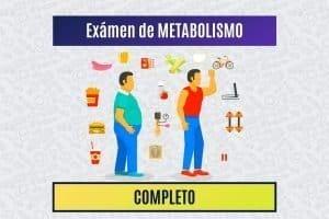 Paradigmia_Test_Metabolismo_Completo